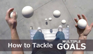How to Tackle Multiple Goals